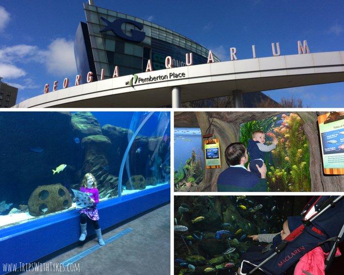 36 Hours with Atlanta with Kids: The Georgia Aquarium