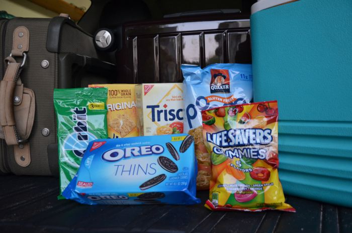 Less Mess Road Trip Tips - Snacks
