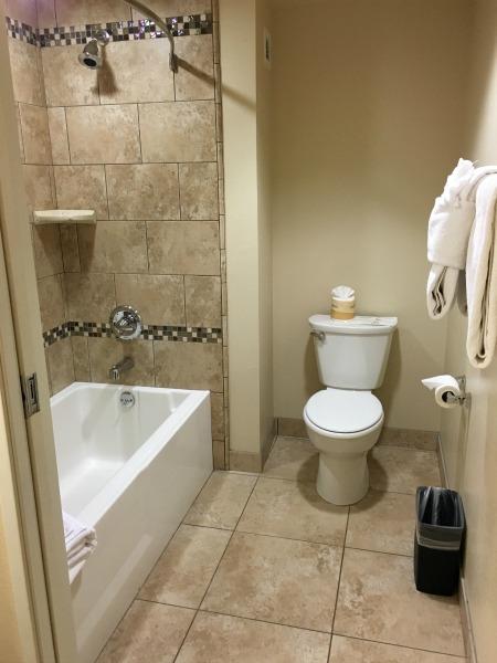 Grand Legacy at the Park Bathroom
