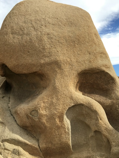 Joshua Tree National Park with Kids - Skull Rock