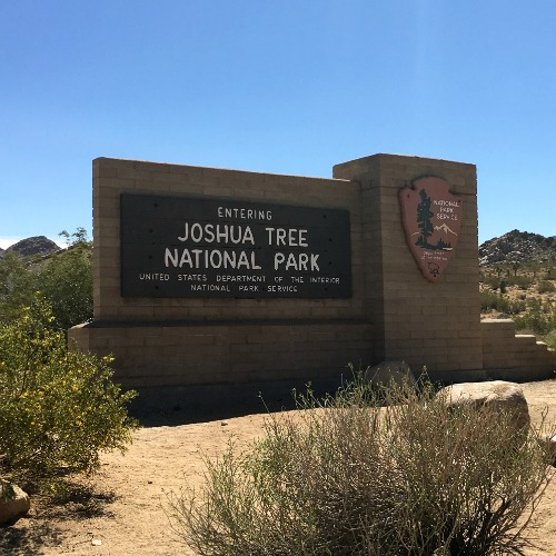 Joshua Tree National Park with Kids - West Entrance