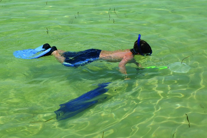 Gulf County Florida Snorkeling