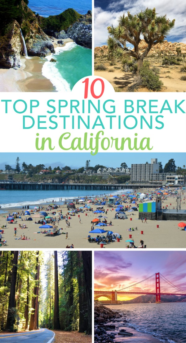 Considering spring break in California? 10 amazing destinations in the Golden State to visit in the spring, including national parks, theme parks, and top city escapes! San Diego, Lake Tahoe, and many more.