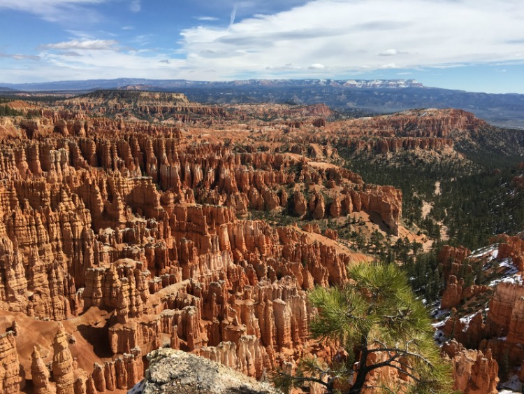 Bryce Canyon Hoodoos from the rim