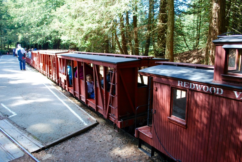 Things to do in Oakland with Kids - Tilden Steam Trains