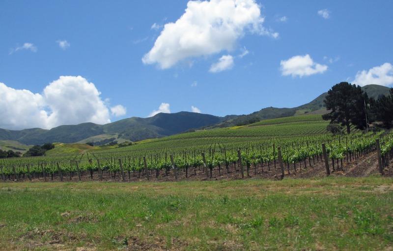 Top Fall Destinations in California - Santa Ynez Valley