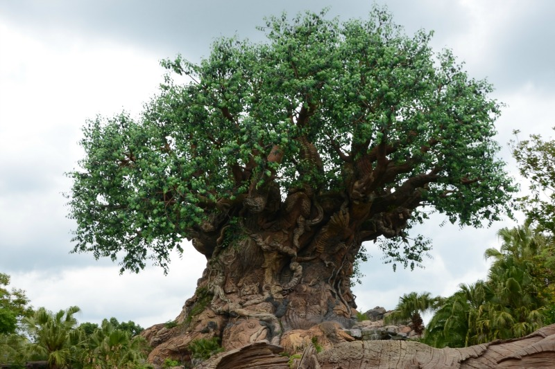 Which Walt Disney World Park to Skip on a Short Trip - Animal Kingdom Tree of Life