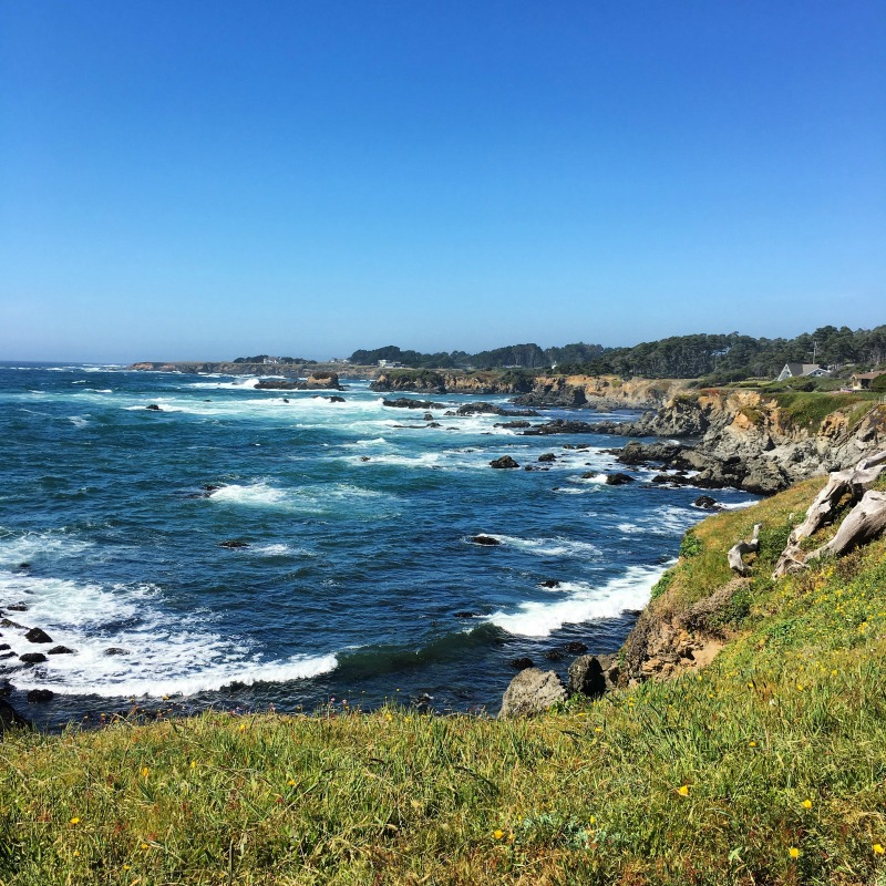 Mendocino County California with Kids -Botanical Gardens Ocean View