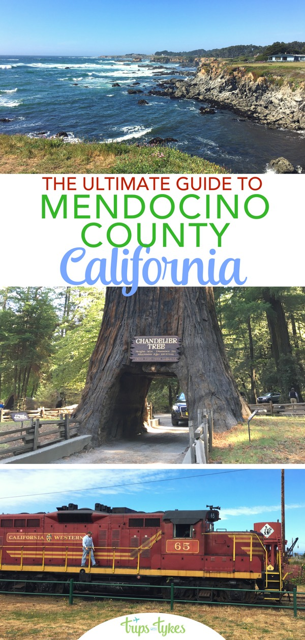The complete family-friendly guide to Mendocino County, California. Activities from outdoor adventures to breweries, lodging, and tips from a Northern California local who has traveled to the county many times. #mendocino #norcal #california #visitcalifornia