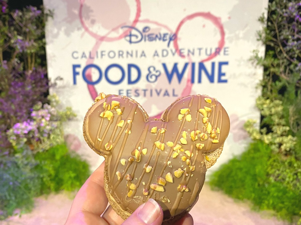 Disney California Adventure Food and Wine Festival Chocolate Peanut Butter Macaron