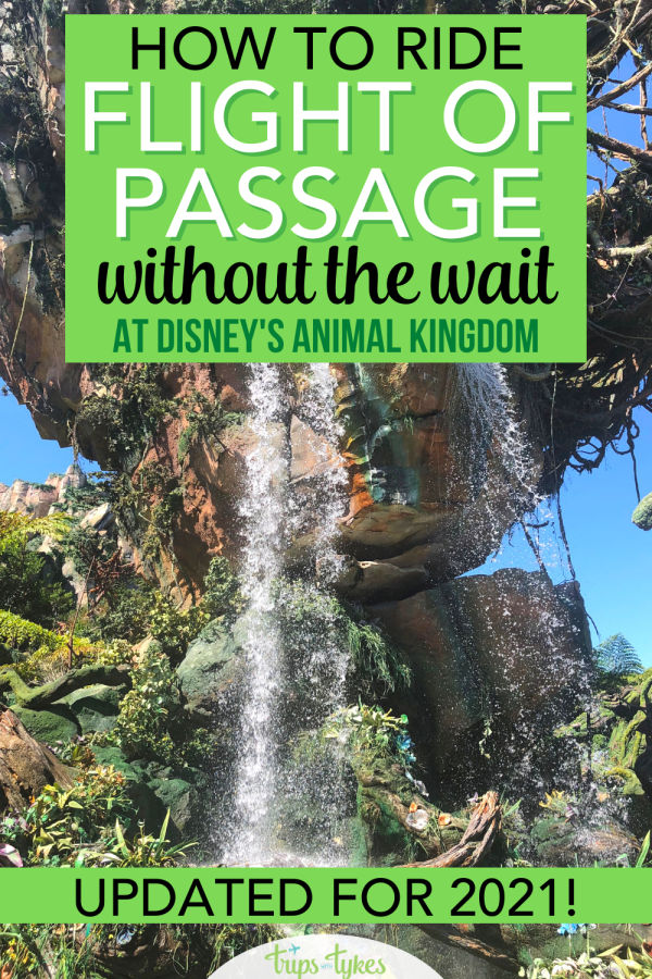 Avatar Flight of Passage in Disney's Animal Kingdom is still an extremely popular ride. Learn how to minimize your wait for Flight of Passage in 2021 with these updated expert tips and tricks applicable to the procedures Walt Disney World is using during its partial reopening at limited capacity.