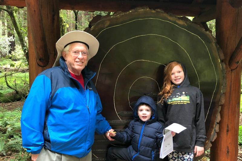 Muir Woods Tree Rings