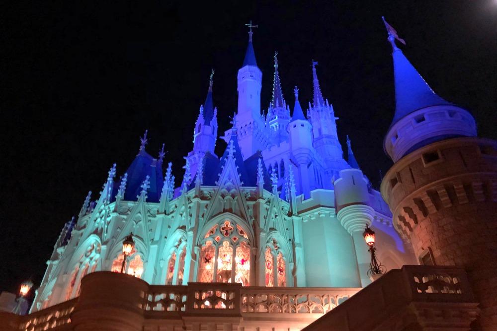 Disney World Cinderella Castle at Night