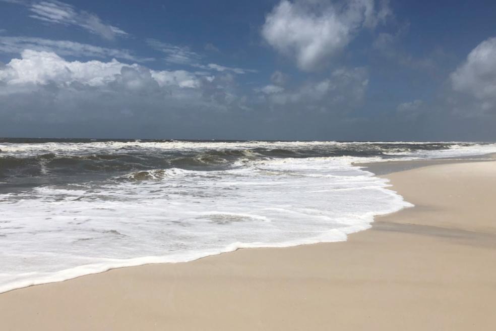 Orange Beach Alabama Waves
