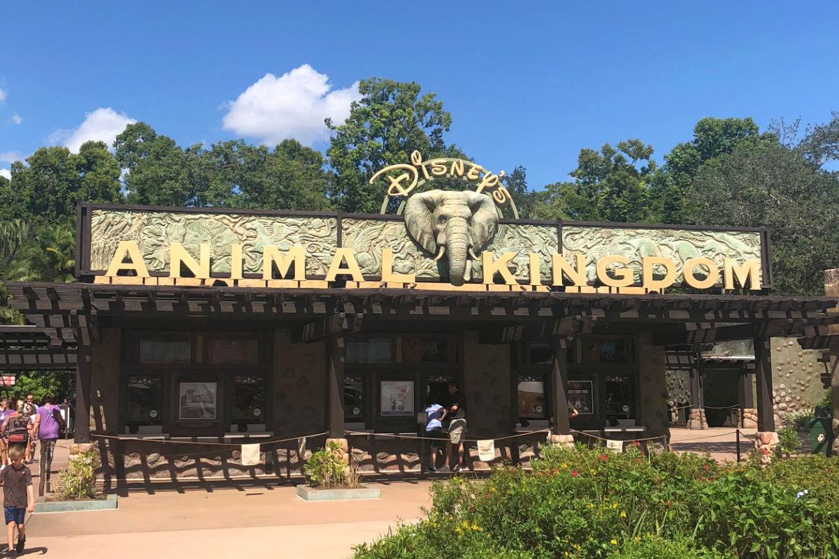 Disney World Animal Kingdom ticket booth and entrance